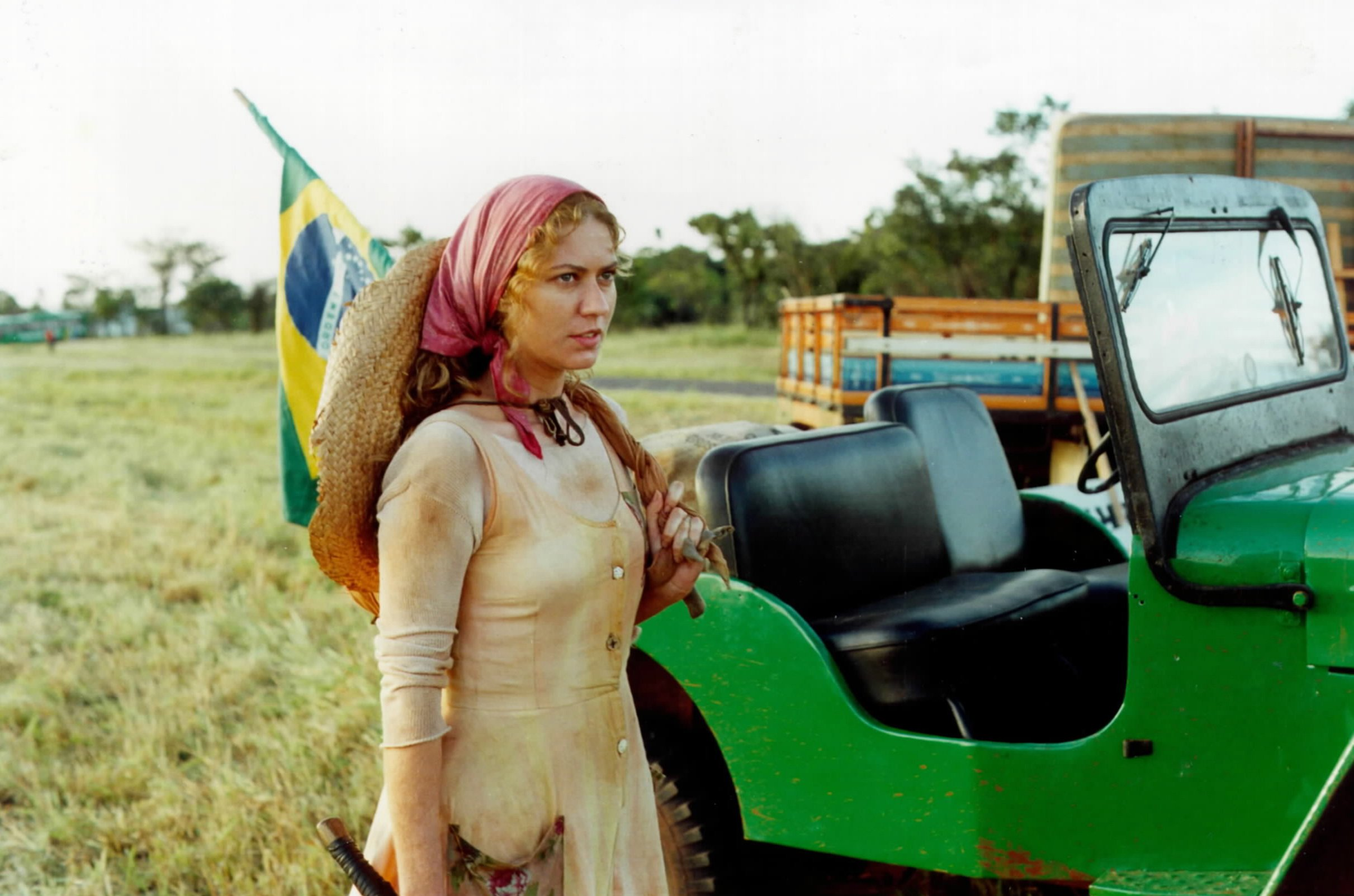 Luana (Patricia Pillar) (Foto: Divulgação)