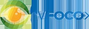 TV Foco - Audiência da TV, Notícias da TV e Famosos
