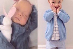 """Eliana. Foto do site da O TV Foco que mostra Eliana se declara para os filhos nas redes sociais: """"amores da vida toda"""""""