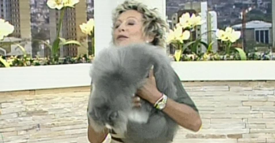 Gato pula do colo de Ana Maria Braga no Mais Você, da Globo (Imagem: Reprodução)