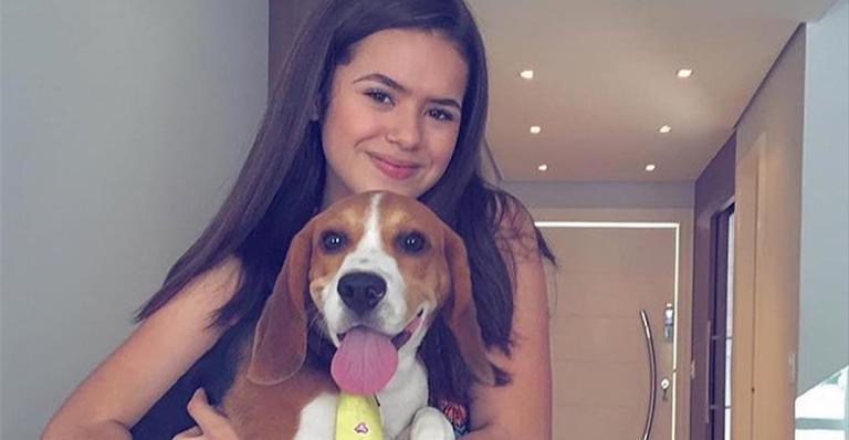Maisa e seu cachorro (Foto: Reprodução/Instagram)