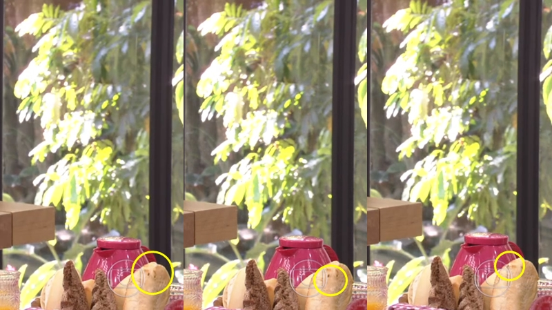 Mosca em cima do pão de Ana Furtado (Foto: Reprodução)