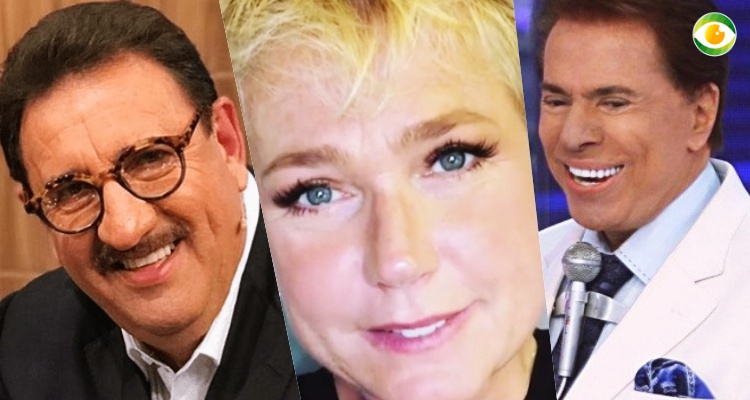 Silvio Santos, Xuxa, Ratinho e os famosos que além de milionários na TV  ganham fortunas com outras empresas  veja quanto 62ea411021