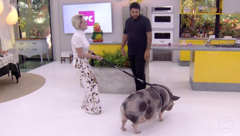 Ana Maria Braga levou um porquinho para a Globo (Foto: Reprodução)