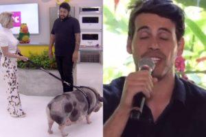 Maycon foi o convidado e o porquinho marcou presença na Globo (Foto: Reprodução)