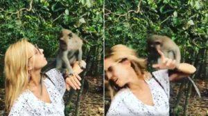 Cris Dias foi atacada por macaco (Reprodução: Instagram)