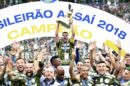 Palmeiras é o atual campeão brasileiro. (Foto: Divulgação)