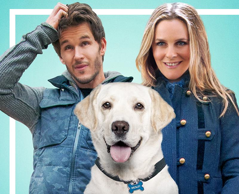 Filme Um Cachorro Para Dois (Foto: Reprodução)