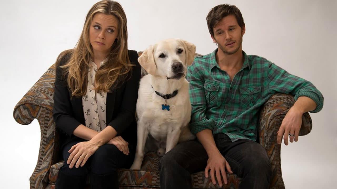 Filme Um Cachorro Para Dois vai ser exibido na Sessão Da Tarde (Foto: Reprodução)