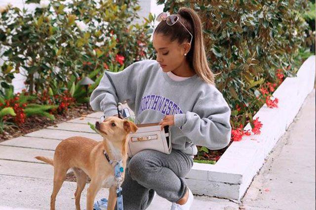 Ariana Grande e um de seus pets (Foto: Reprodução)