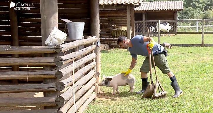 Jorge Sousa apelidou porco por Jorge em A Fazenda 11 e faz carinho no animal (Reprodução: PlayPlus)