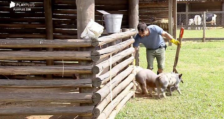 Jorge Sousa se diverte com porquinhos em A Fazenda 11 e coloca o nome de Laura Keller (Reprodução: PlayPlus)