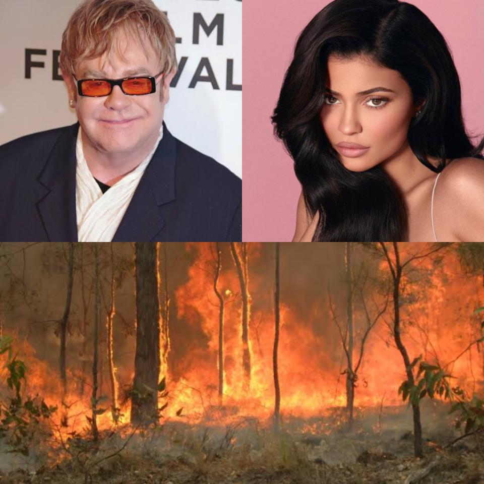 Veja a lista de celebridades que fizeram doações para combater os incêndios na Austrália (Foto: Reprodução)