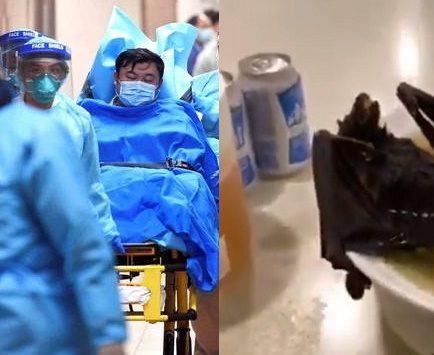 Coronavírus pode ser por sopa de morcego (Foto: Reprodução)