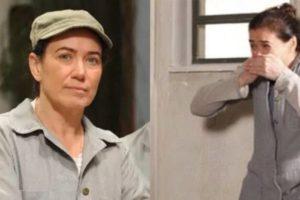 Lilia Cabral sofreu um pequeno acidente durante as gravações das primeiras cenas de Fina Estampa (Montagem: TV Foco)