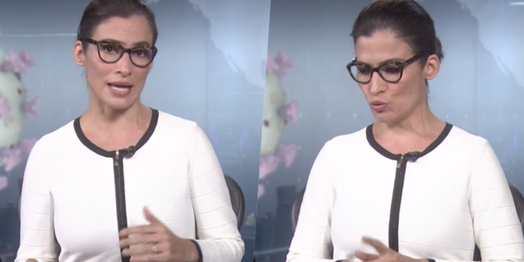 Renata Vasconcellos, que comanda o Jornal Nacional, deu o que falar ao vivo (Foto montagem: TV Foco)