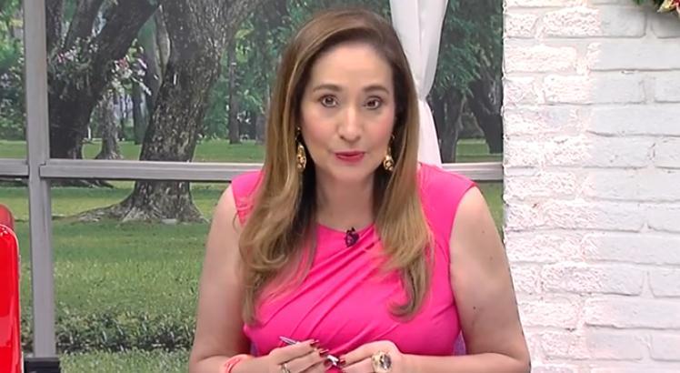 Sonia Abrão (Foto: RedeTV!)