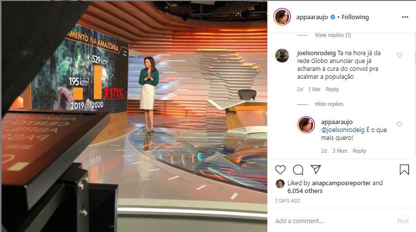 Ana Paula Araújo da Globo (Foto: Reprodução)
