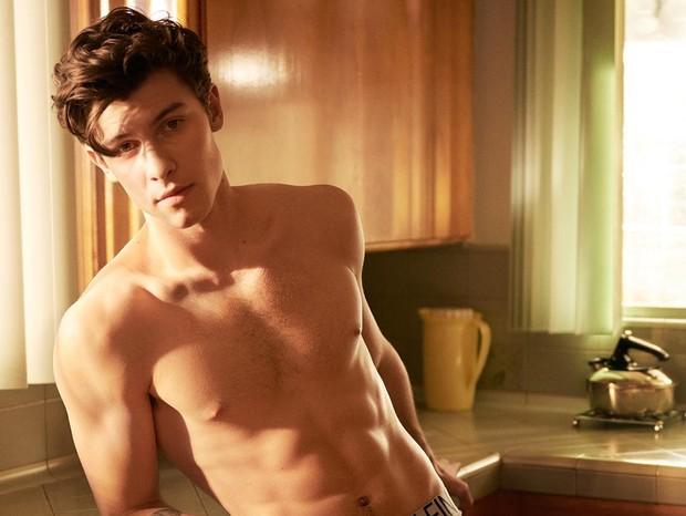 Verdadeira sexualidade de Shawn Mendes vem à tona após cantor ser pego no pulo do gato (Foto: Reprodução)