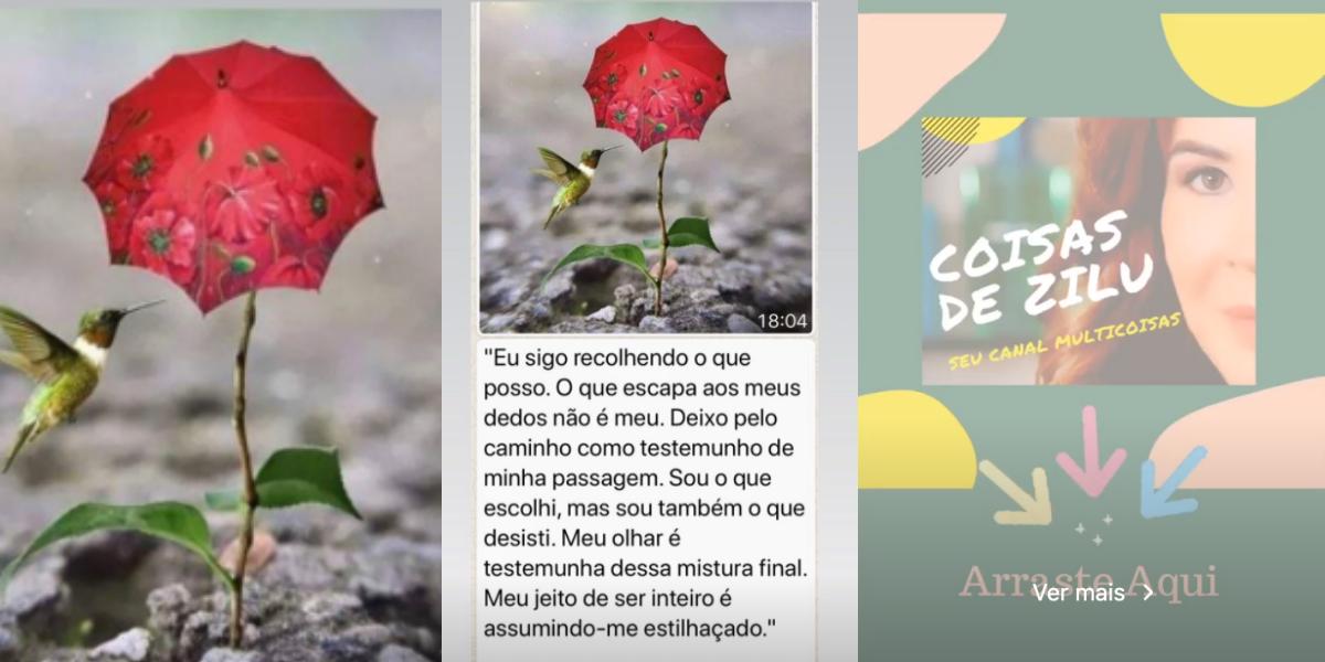 Prints Stories Zilu (Foto: Reprodução)