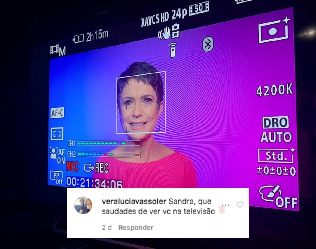 Seguidora comenta foto no Instagram de Sandra Annenberg (Foto: Montagem)