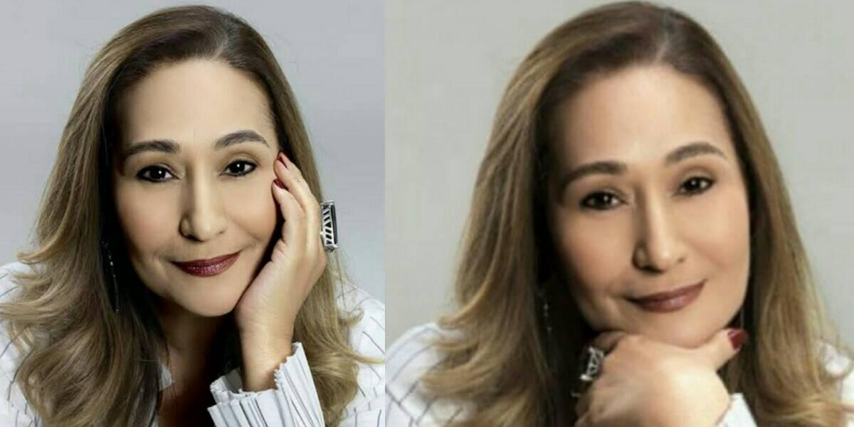 Sonia Abrão (Foto: Reprodução/Chico Audi)