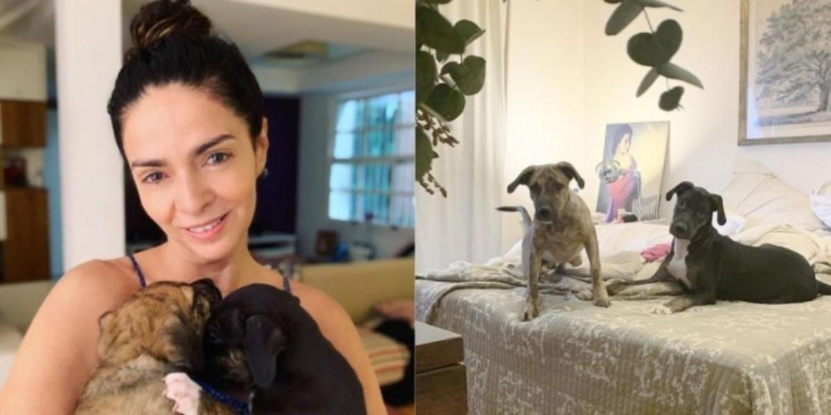 Claudia Ohana devolveu cachorros após adoção (Foto: Reprodução/Instagram)