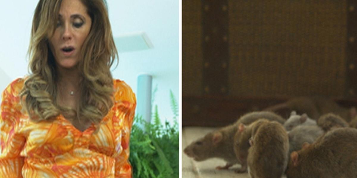 Tereza Cristina (Christiane Torloni) fica presa com ratos em Fina Estampa (Foto: Reprodução/Globo)