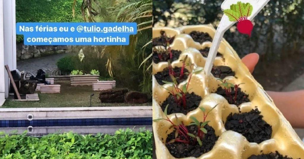 Horta feita por Fátima Bernardes com Túlio Gadêlha. (Foto: Reprodução)