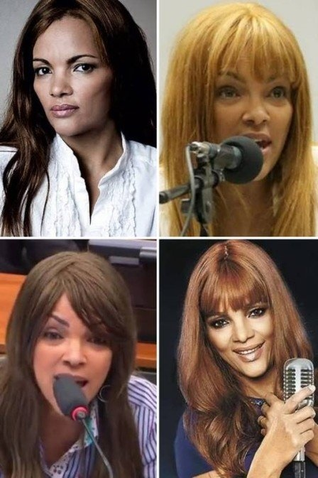 Flordelis e as suas famosas perucas (Foto: Montagem)