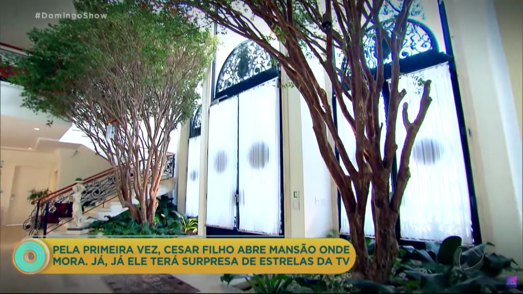 Árvores na sala de Cesar Filho (Foto: Reprodução)