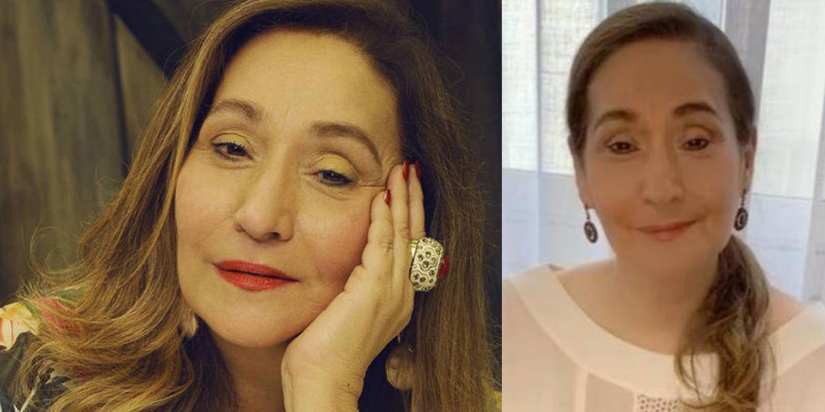 Sonia Abrão, apresentadora do A Tarde é Sua, na RedeTV! (Foto: Montagem)