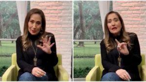 Sônia Abrão (Foto: Reprodução)