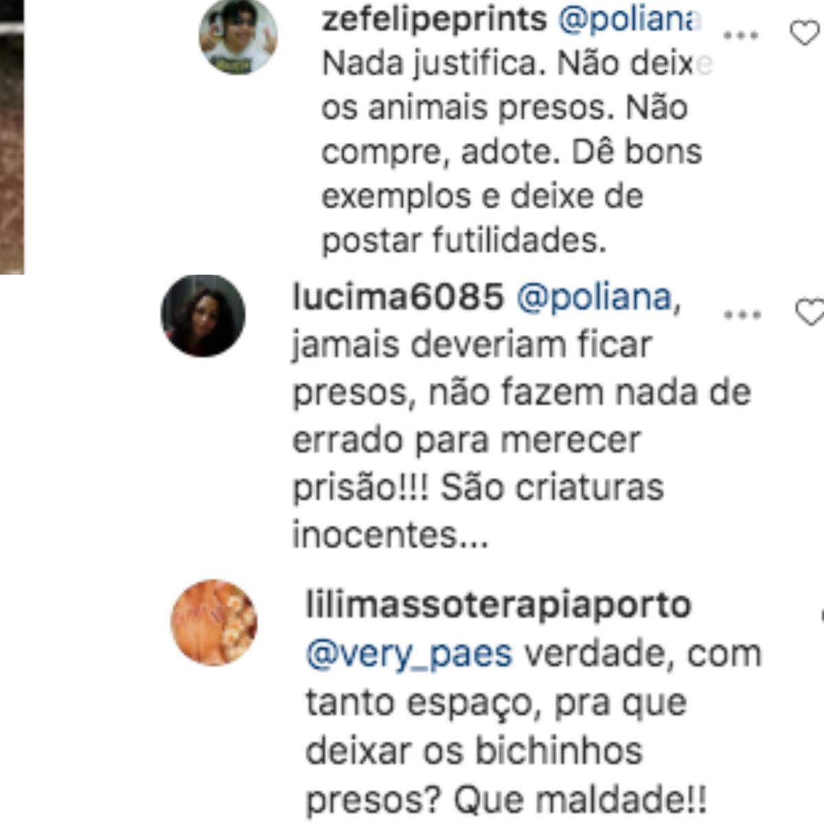 Poliana Rocha vê comentários sobre canil (Foto: Montagem)