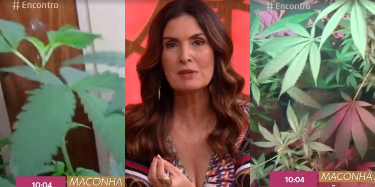 """Fátima Bernardes falou sobre o uso de maconha medicinal no """"Encontro"""" (Foto: Reprodução/TV Globo)"""