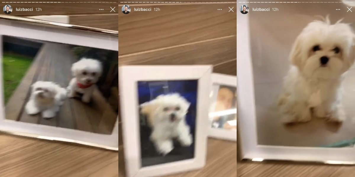 Luiz Bacci expôs fotos de Toy em seu camarim (Foto: reprodução/Instagram)
