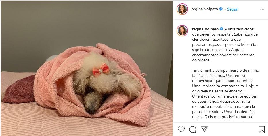Publicação de Regina Volpato se despedindo da sua cachorra Tina (Foto: Reprodução)