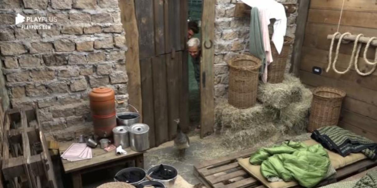 Baia de A Fazenda 12 (Foto: Reprodução)