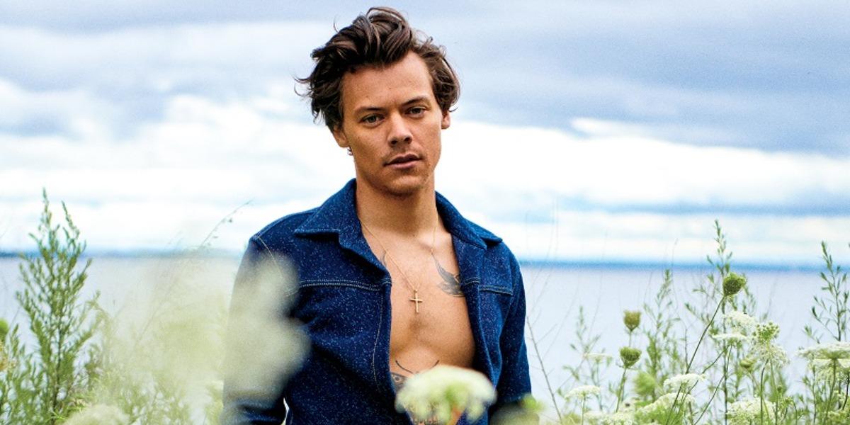 Harry Styles surge nu em filme com outro rapaz (Foto: Reprodução)
